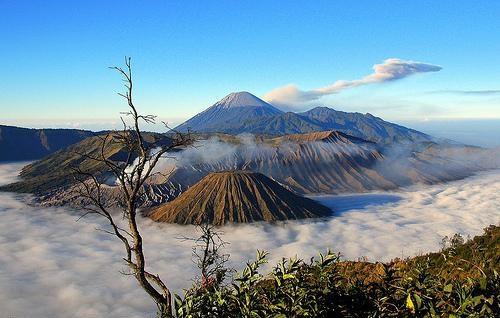 Wisata Ke Bromo Wisata Ke Bromo Murah Wisata Ke Bromo Dari Malang Tourandtravelmalang